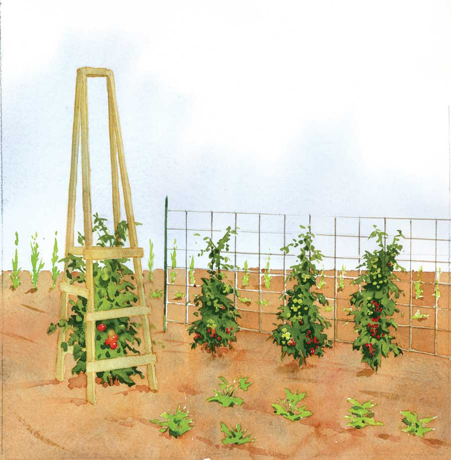 Diy Is In Our Dna Garden Made Tomato Cages Bang Land Trust