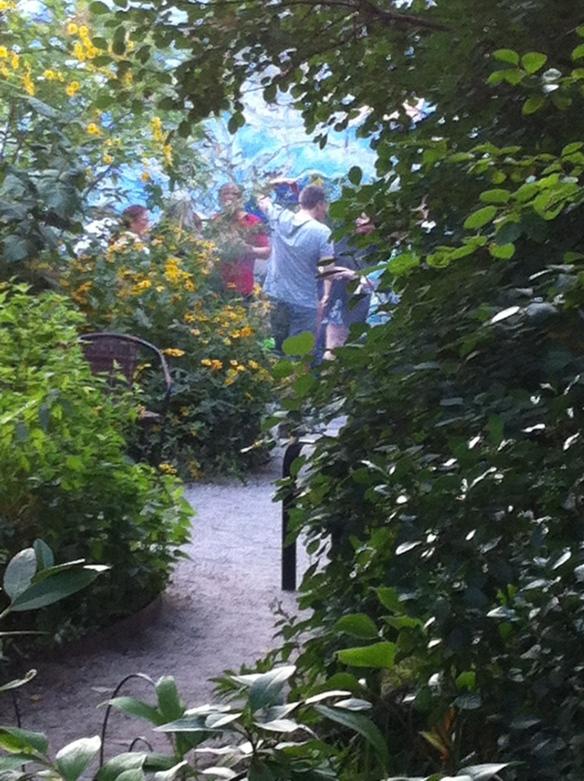 The garden as Eden